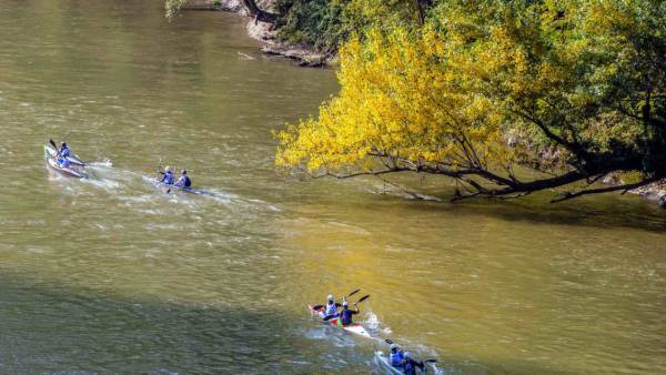 Sul fiume Adige torna l'Adigemarathon, gara di canoa, kayak e rafting