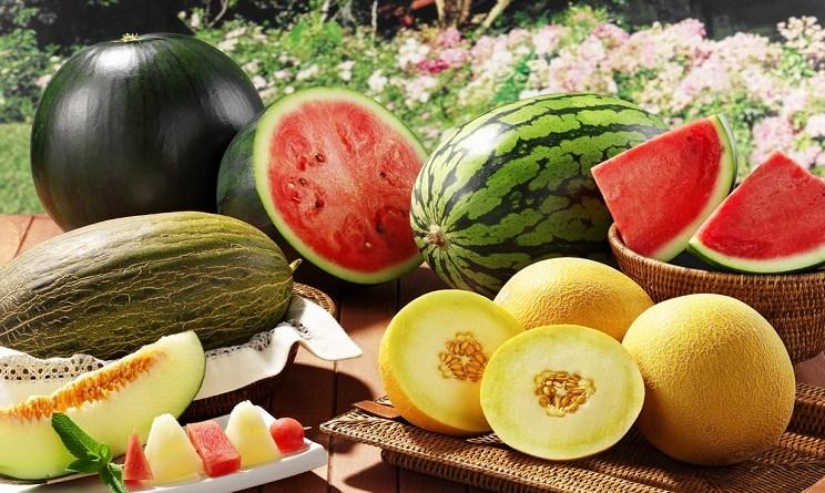 Melone e Anguria di Verona