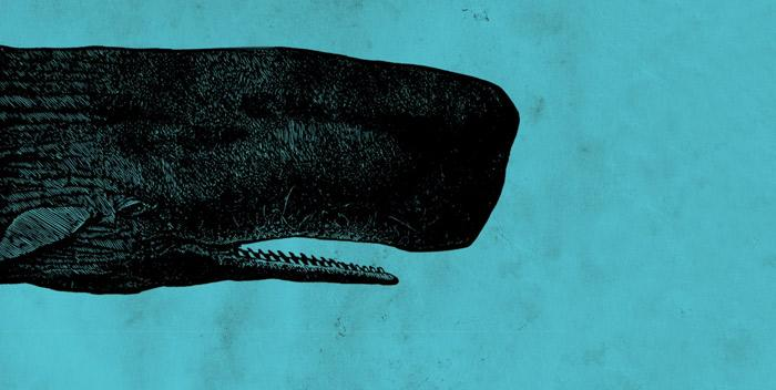 Moby Dick per i 200 anni dalla nascita al Teatro Ristori