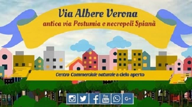 Scopri via Albere antica strada Postumia - Sagre e Manifestazioni a Verona