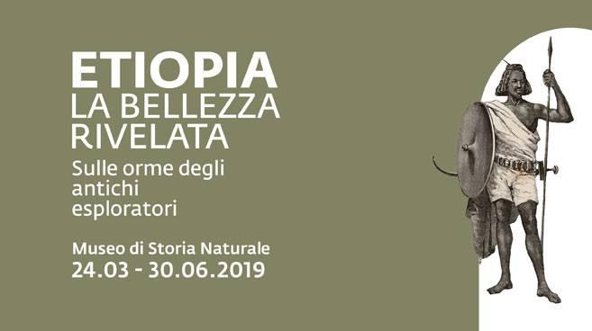 "La mostra ""La bellezza rivelata"" al Museo di Storia Naturale di Verona"