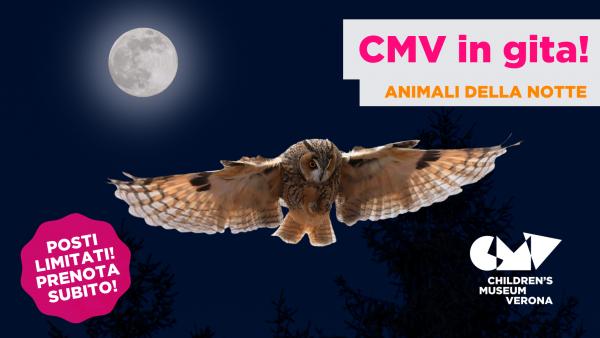 Animali della Notte CMV in gita!