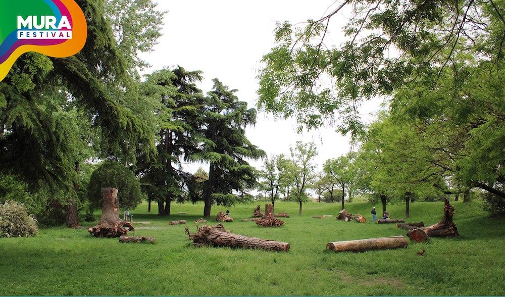 Nuova vita agli alberi